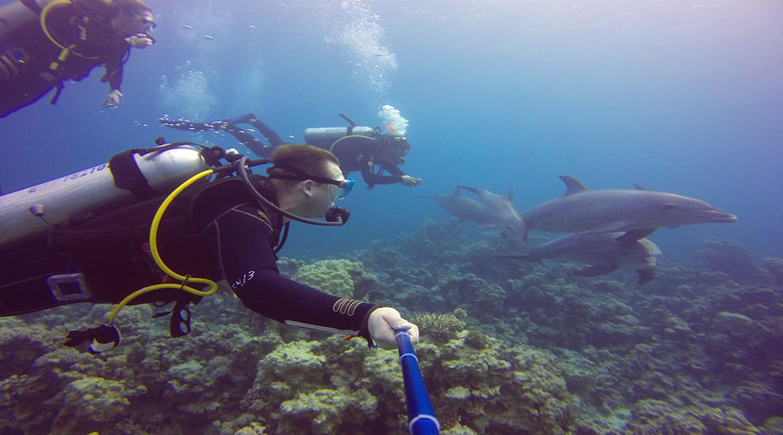Diving Center & Aqua Center